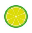 lemon slice citrus vector image