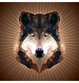 Polygonal Wolf vector image