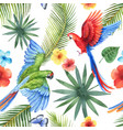 watercolor seamless pattern with parrots vector image