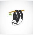 cute sloth hanging on tree branch on white vector image
