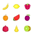 Fruit icons set cartoon style vector image