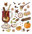 hand-drawn mulled wine ingredients and spices for vector image vector image