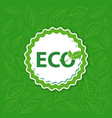 label eco in green background sticker vector image