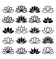 lotus flower design set yoga collection vector image vector image
