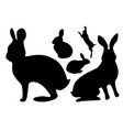 set black silhouettes of hares in different poses vector image