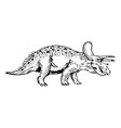 triceratops engraving vector image