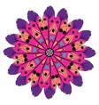 colorful mandala design vector image