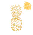ripe pineapple on a white background hand drawn vector image vector image