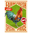Rooster Farm Sale Offer Vintage Poster vector image