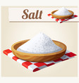 salt detailed icon vector image
