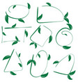 set of ecological leaf shapes on white background vector image