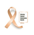 uterine cancer month peach ribbon banner realistic vector image vector image