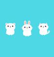 white rabbit bunny cat kitty kitten polar bear vector image vector image