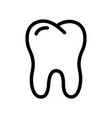 whole healthy tooth icon linear logo vector image vector image