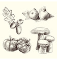 Autumn food set sketch vector image