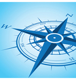 blue compass vector image vector image