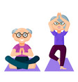 cute old couple dressed in sports clothing vector image vector image