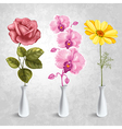 Flowers in the vases vector image