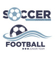 football and soccer game isolated icons sport vector image