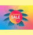 Summer sale banner tropical background with palm