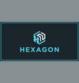 xn hexagon logo design inspiration vector image vector image