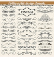 set of vintage calligraphic design elements vector image