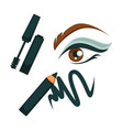 eye make up poster with all cosmetic tools vector image