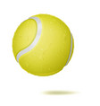 3d tennis ball classic yellow ball vector image vector image