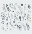 decorative floral elements for design projects vector image vector image