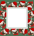 pug santa claus dog with red scarf on green vector image