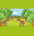 scene with many deers in forest vector image