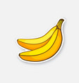 sticker two bananas vector image vector image