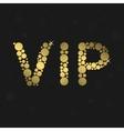 VIP luxury symbol vector image vector image