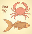 Sketch cute crab and fish in vintage style vector image
