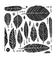 art feathers collection ornate sketch for your vector image vector image