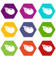 bearberry icons set 9 vector image vector image