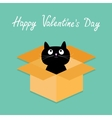 Cat inside opened cardboard package box Happy vector image vector image