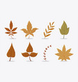 set beautiful and colourful autumn leaves on vector image vector image