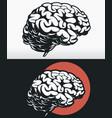 silhouette side profile brain outline black vector image