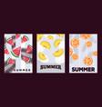 summer fruits banner juicy vector image