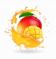 a splash of juice with mango and mango slices vector image vector image