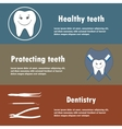 Background or banner teeth dental instruments vector image vector image