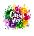 carnival mardi gras on multicolors vector image