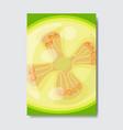 cut feijoa template card slice fresh fruit poster vector image vector image