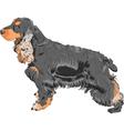 english cocker spaniel dog vector image vector image