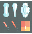 Feminine pads and tampons vector image vector image