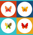 flat monarch set of butterfly beauty fly danaus vector image