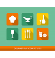 Gourmet flat icons set vector image