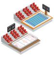 hockey stadium and swimming pool vector image vector image