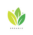 leaf creative concept logo design template vector image